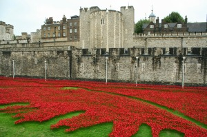 Tower_of_London_poppies_0574