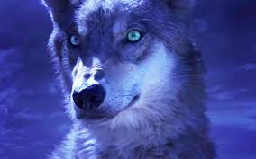 wolf_totem